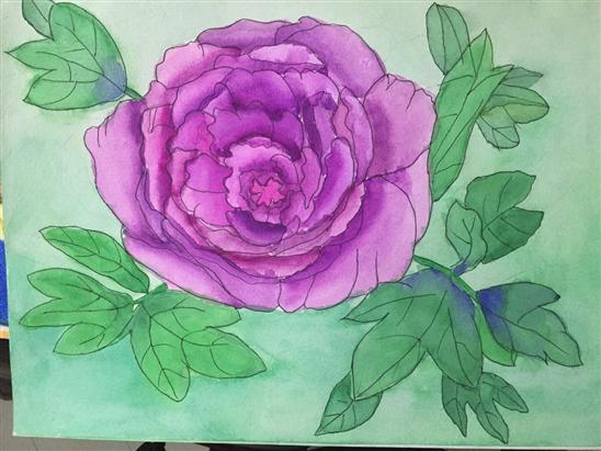 这朵牡丹花是我水粉作品里比较喜欢的一幅.